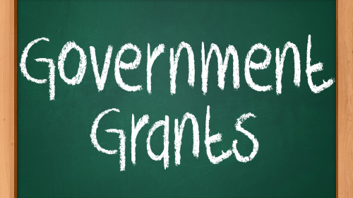 Facts About Government Grants